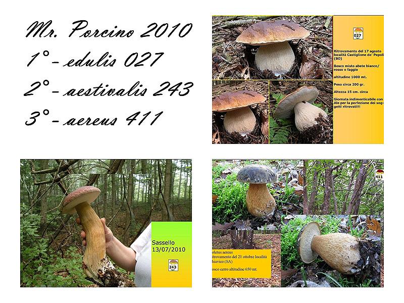 mrporcino2010.jpg