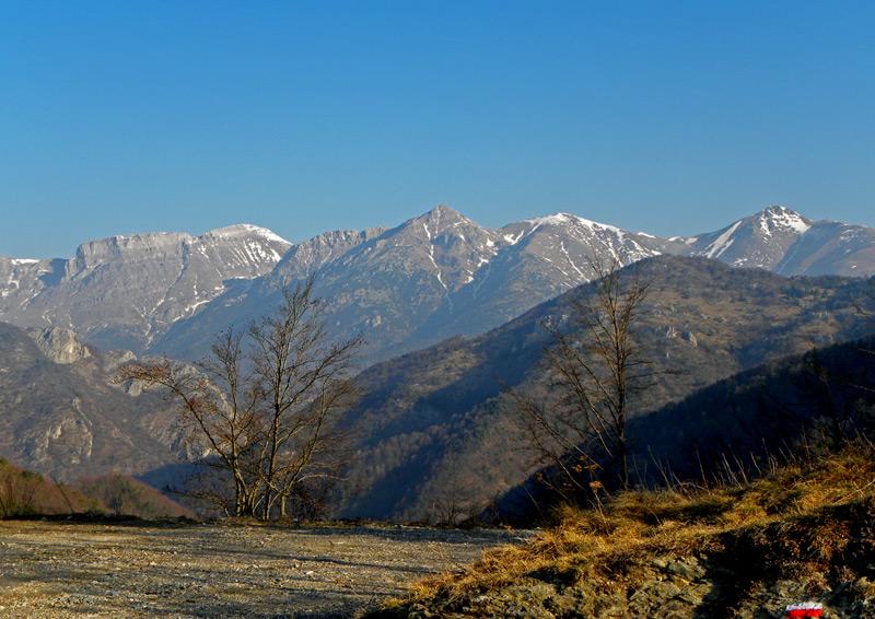 16-marzo-2012-005.jpg