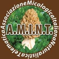 Logo_UFFICIALE 200200.jpg