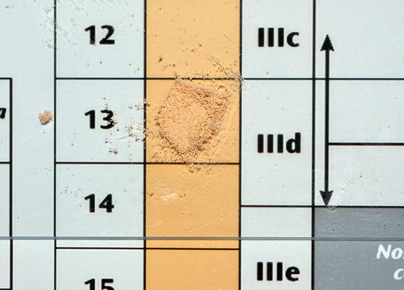 Russula ochrospora 17 Sporata IIId.jpg