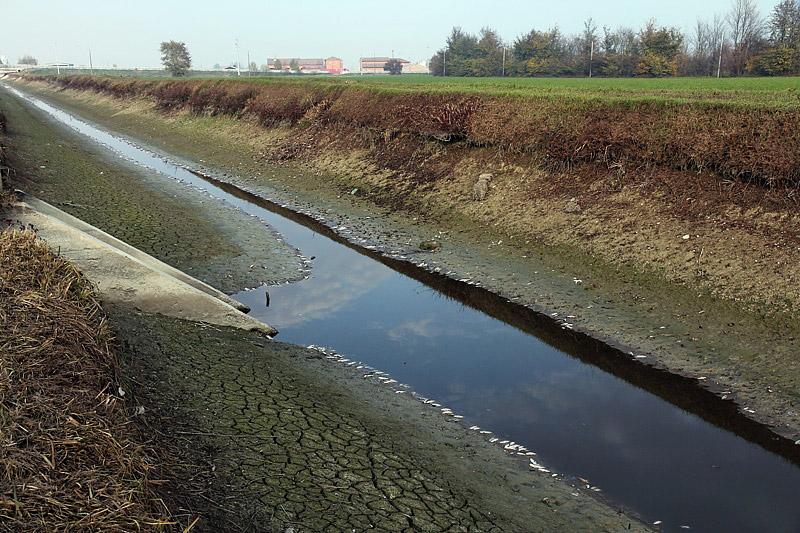 8-inquinamento-canale di caprara-XMG_9136.jpg