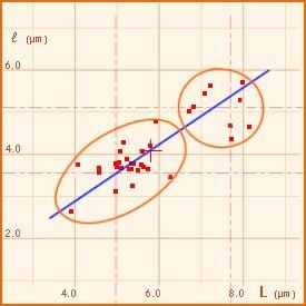 Rodocybe gemina TL191121-25 - Diagramma sporale.jpg