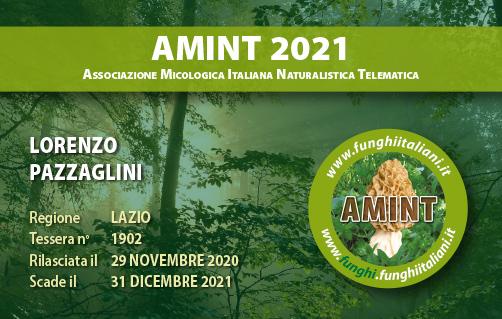 Tessera AMINT 1902 2021.jpg