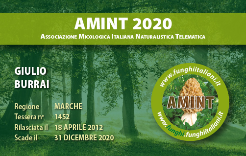 Tessera AMINT 1452 2020.jpg