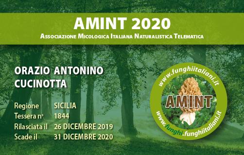 Tessera AMINT 1844 2020.jpg