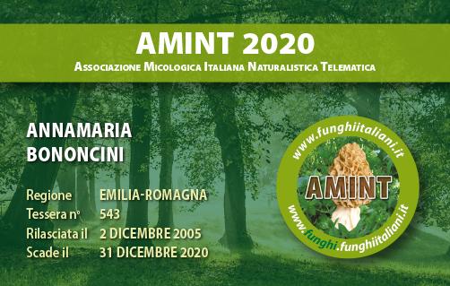 Tessera AMINT 0543 2020.jpg