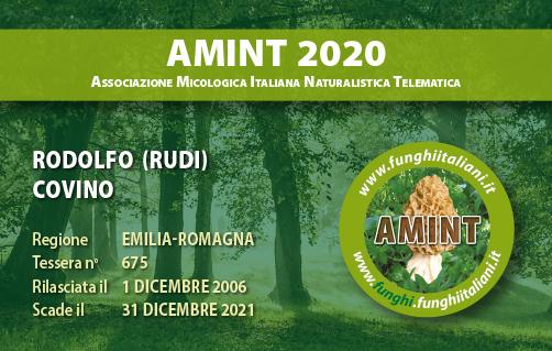 Tessera AMINT 0675 2020.jpg