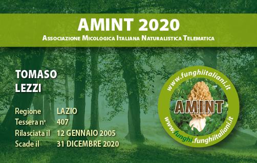 Tessera AMINT 0407 2020.jpg