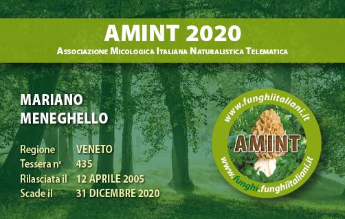 Tessera AMINT 0435 2020.jpg