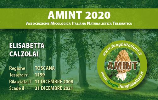 Tessera AMINT 1199 2020.jpg