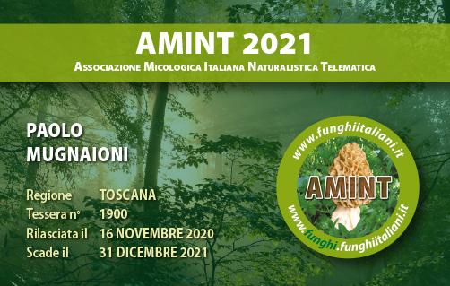 Tessera AMINT 1900 2021.jpg