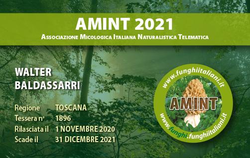 Tessera AMINT 1896 2021.jpg