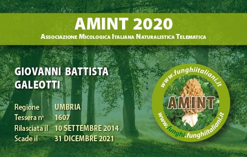 Tessera AMINT 1607 2020.jpg