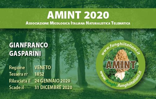 Tessera AMINT 1852 2020.jpg