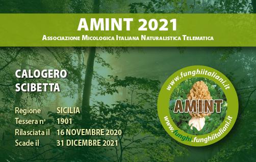 Tessera AMINT 1901 2021.jpg