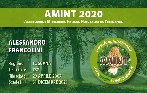Tessera AMINT 0737 2020.jpg