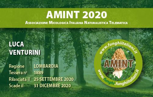 Tessera AMINT 1889 2020.jpg