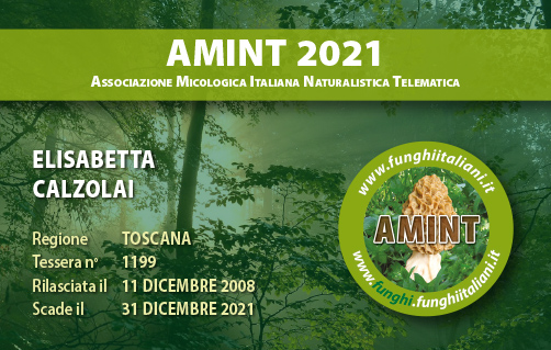 Tessera AMINT 1199 2021.jpg