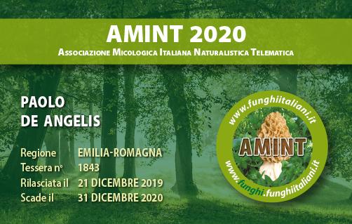Tessera AMINT 1843 2020.jpg