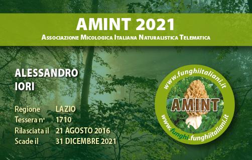 Tessera AMINT 1710 2021.jpg
