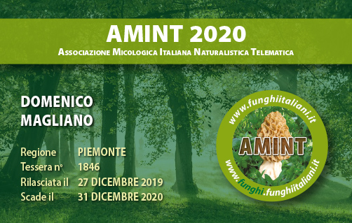Tessera AMINT 1846 2020.jpg