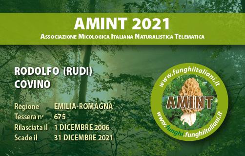Tessera AMINT 0675 2021.jpg