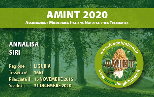 Tessera AMINT 1661 2020.jpg