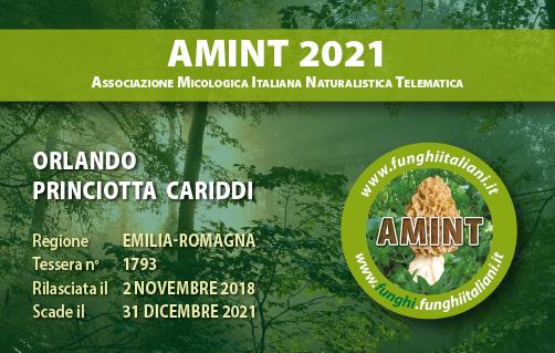 Tessera AMINT 1793 2021.jpg