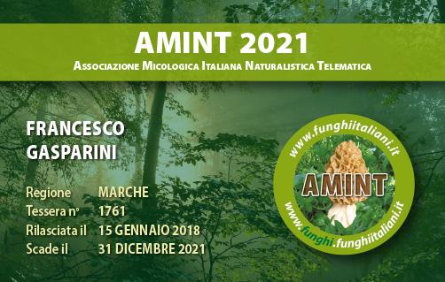 Tessera AMINT 1761 2021.jpg