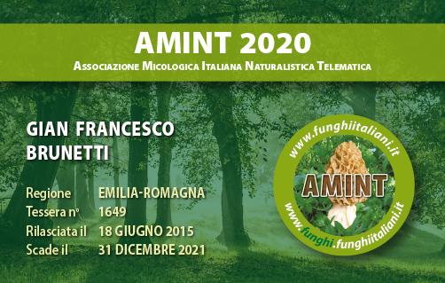 Tessera AMINT 1649 2020.jpg