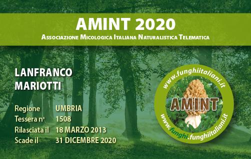 Tessera AMINT 1508 2020.jpg