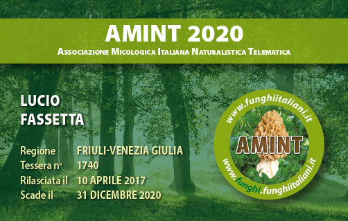 Tessera AMINT 1740 2020.jpg