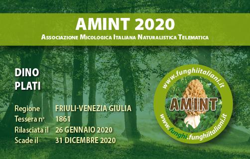 Tessera AMINT 1861 2020.jpg