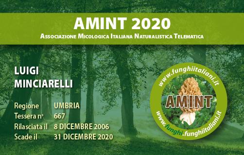 Tessera AMINT 0667 2020.jpg
