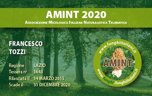 Tessera AMINT 1643 2020.jpg
