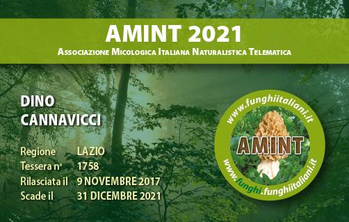 Tessera AMINT 1758 2021.jpg