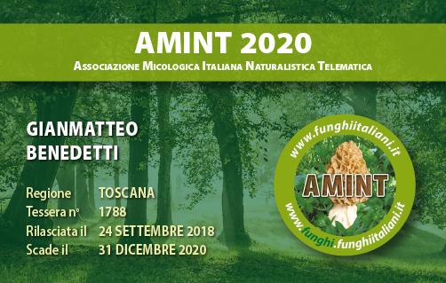Tessera AMINT 1788 2020.jpg