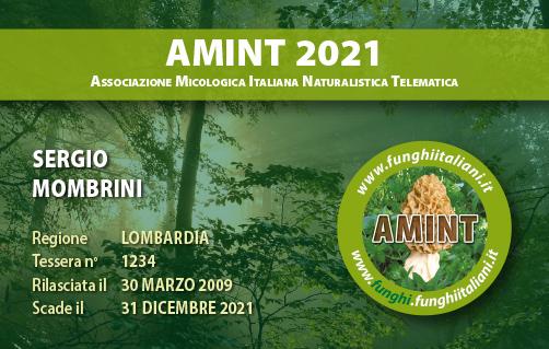 Tessera AMINT 1234 2021.jpg