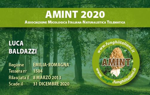 Tessera AMINT 1504 2020.jpg