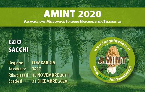 Tessera AMINT 1417 2020.jpg