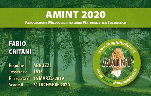 Tessera AMINT 1815 2020.jpg