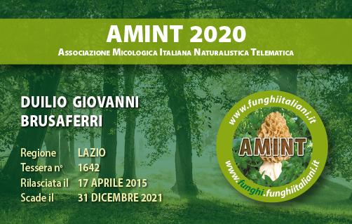 Tessera AMINT 1642 2020.jpg