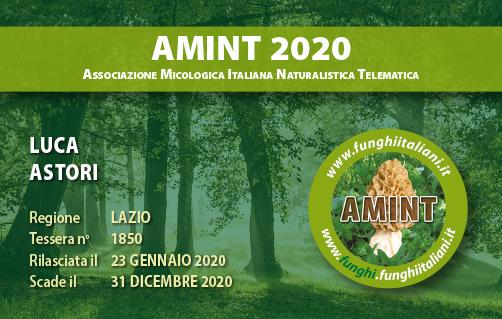 Tessera AMINT 1850 2020.jpg