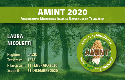 Tessera AMINT 1873 2020.jpg