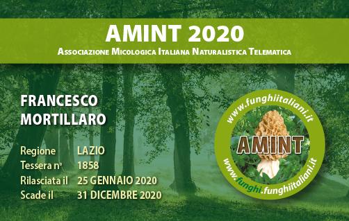 Tessera AMINT 1858 2020.jpg