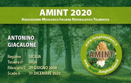 Tessera AMINT 1026 2020.jpg