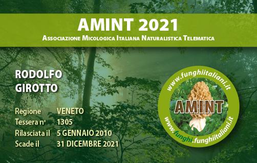 Tessera AMINT 1305 2021.jpg