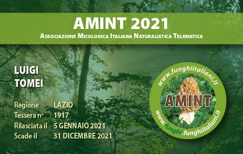 Tessera AMINT 1917 2021.jpg