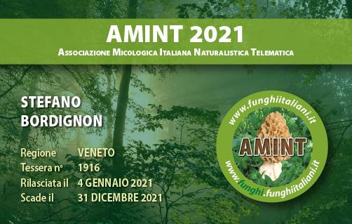 Tessera AMINT 1916 2021.jpg