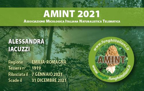Tessera AMINT 1919 2021.jpg